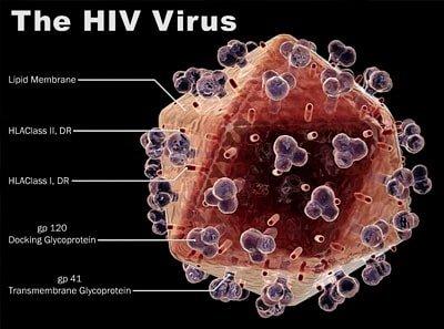Какие существуют стадии ВИЧ-инфекции?