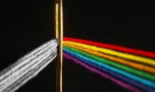 ЛГБТ-сообщество винит питерских депутатов в росте ВИЧ-больных