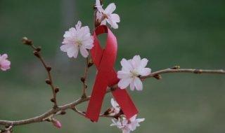 Начало лечения ВИЧ, чем раньше тем лучше