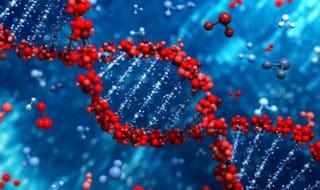 В США впервые вылечили ВИЧ с помощью редактирования генов