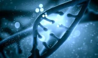 Ученые: Переход от ВИЧ к СПИД ускоряют гены