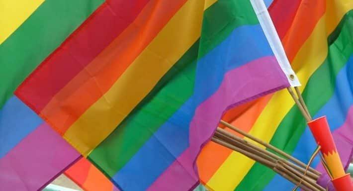 Школа ЛГБТ-активизма