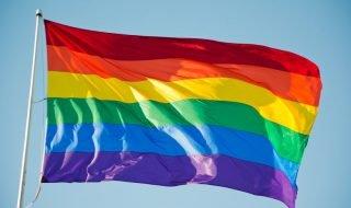 Санкт-Петербургская школа ЛГБТ-активизма